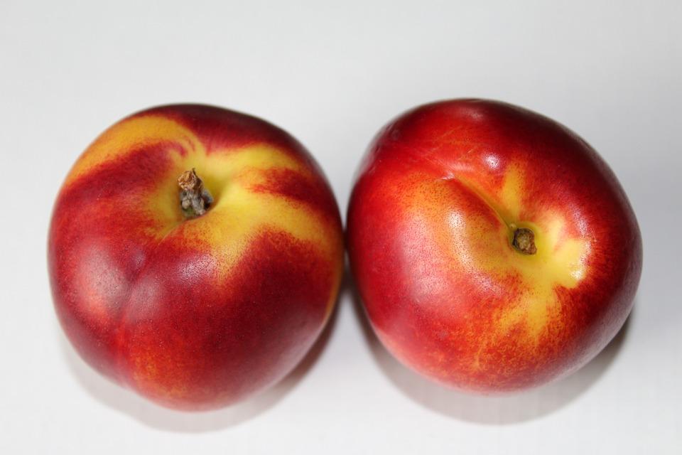 Nectarines, Fruit, Red