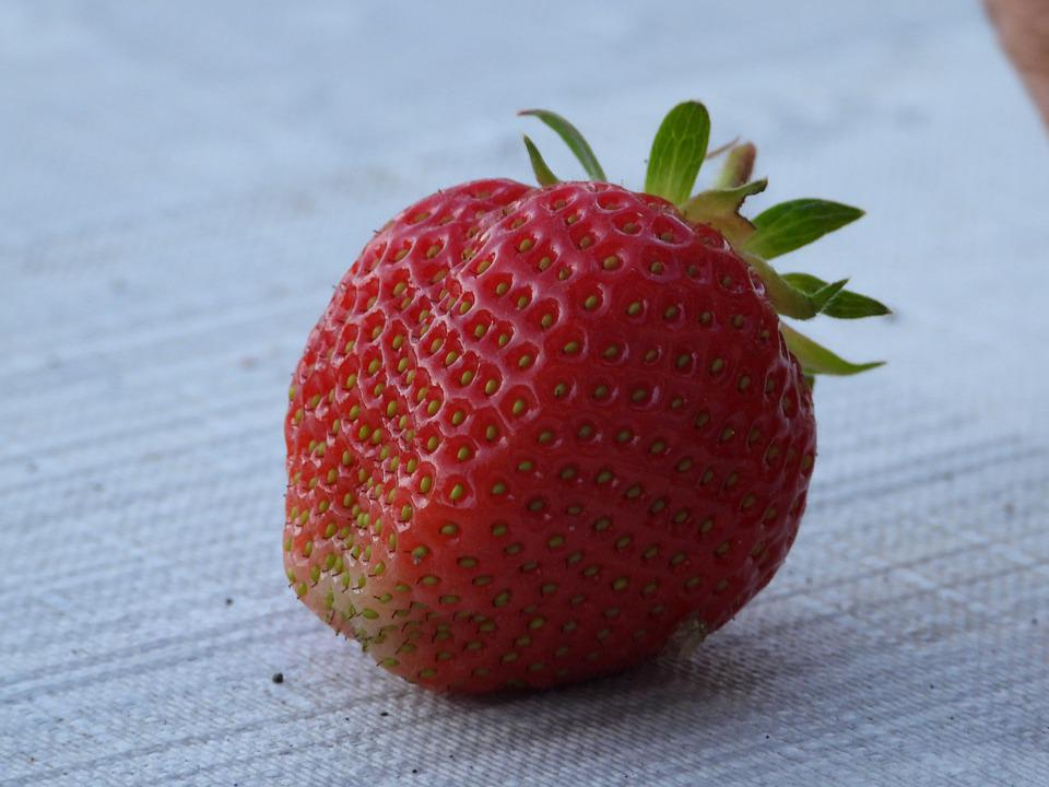 Strawberry, Fruit, Red, Mature, Strawberries, Food