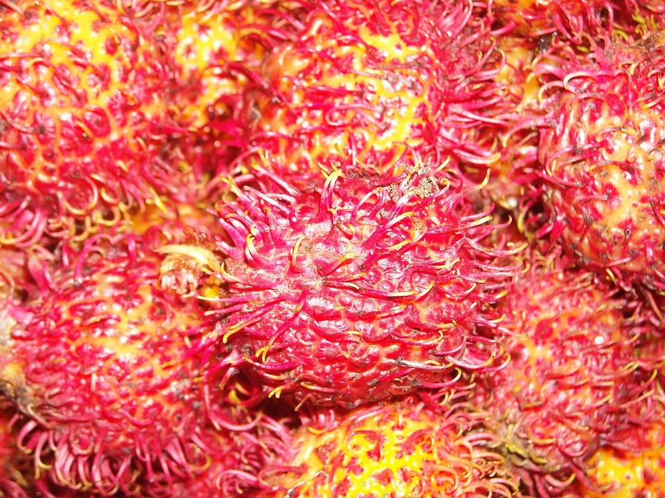Fruit, Rambutan, Red, Yellow