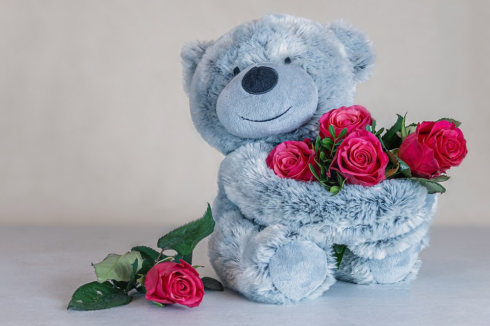 Roses, Red Roses, Teddy Bear, Teddy, Love, Cute