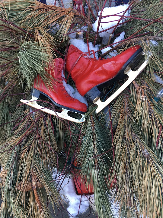 Skate, Red, Sport, Ankle Boot, Trees, Snow, Winter