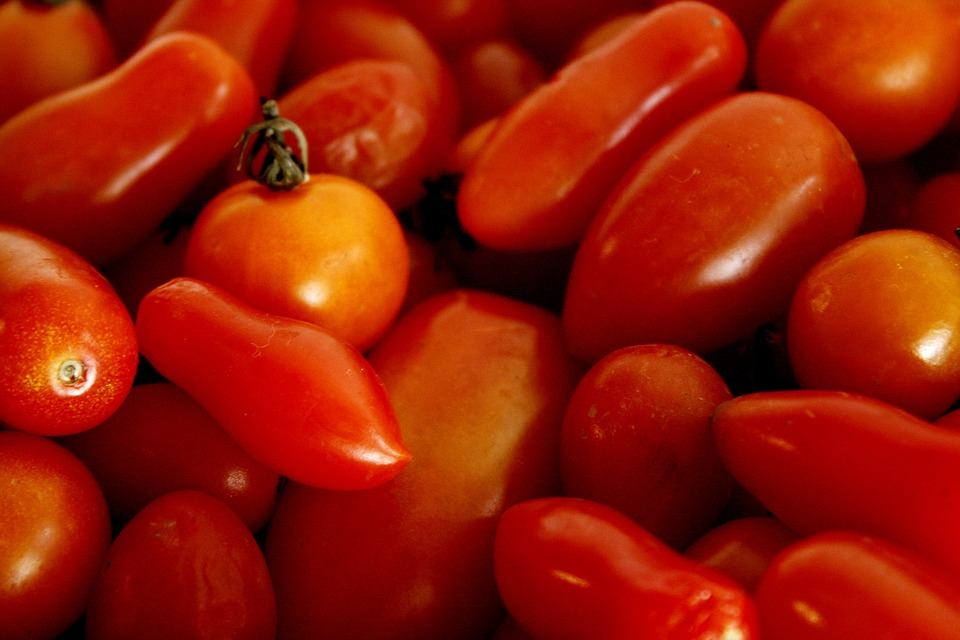 Tomato, Red, Orange, Vegetable, Organic, Nature, Salad