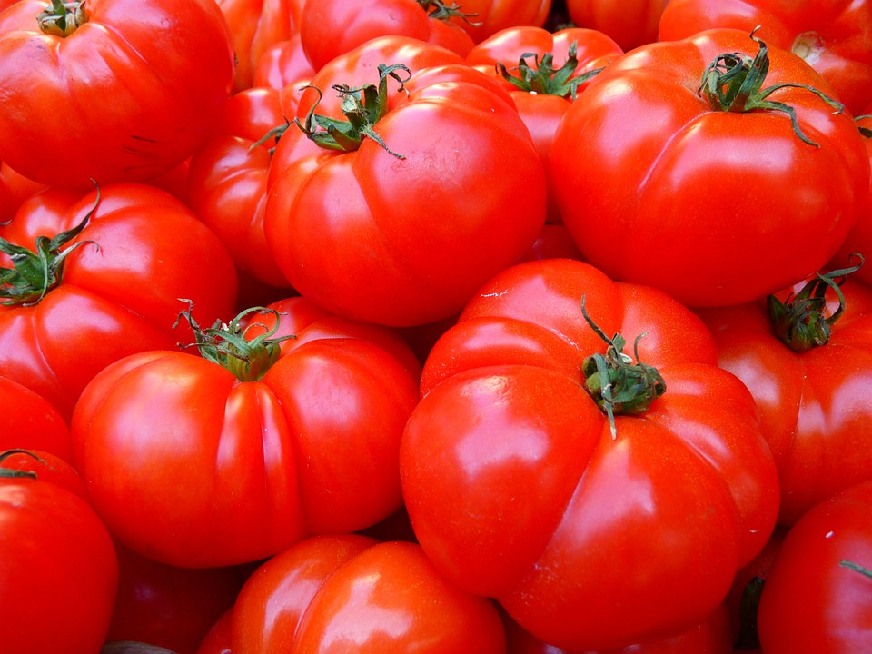 Tomatoes, Vegetables, Red, Food