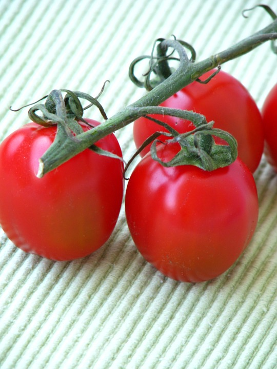 Tomatoes, Red, Vegetarian