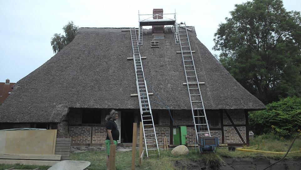 House, Reed Roof, Renovation, Rural, Roof, Plön