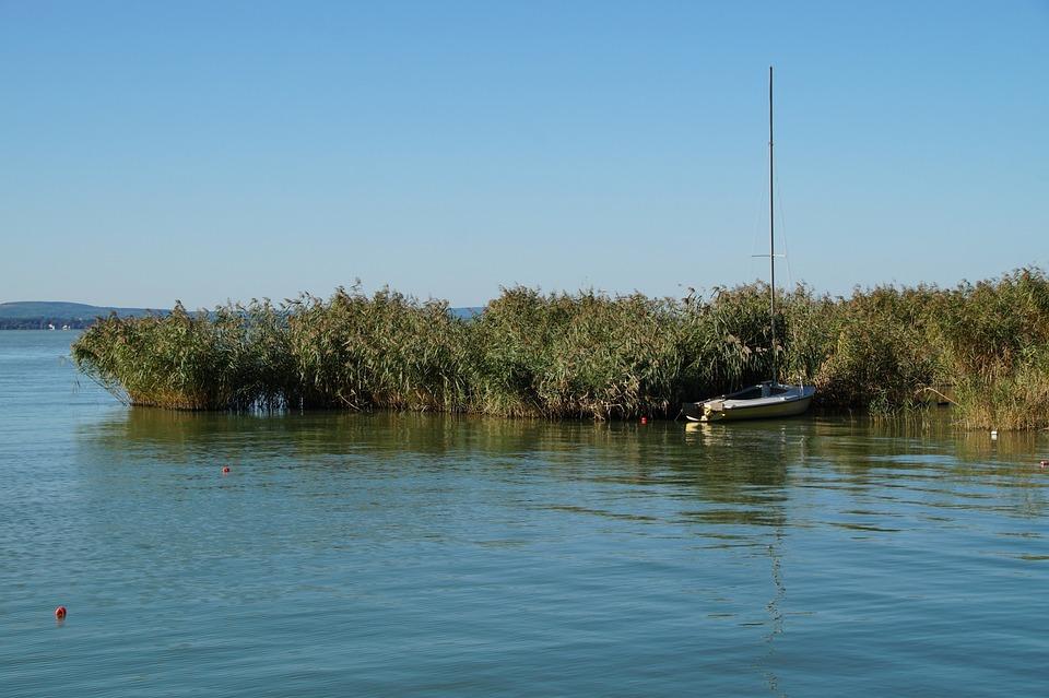 Lake, Balaton, Reeds, Rowboat, Sailing Boat