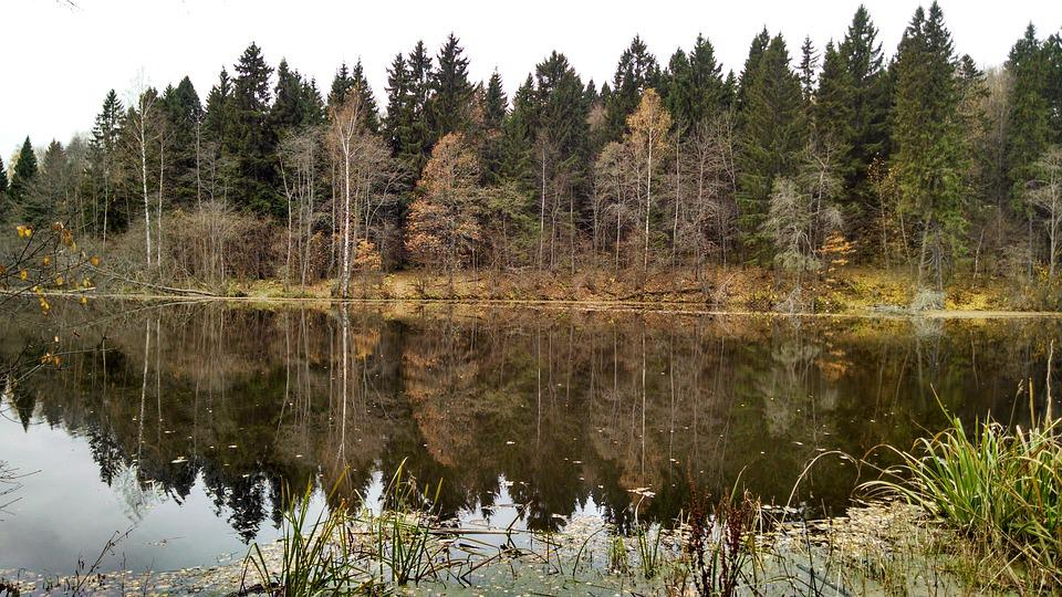 Autumn, Lake, Reflection