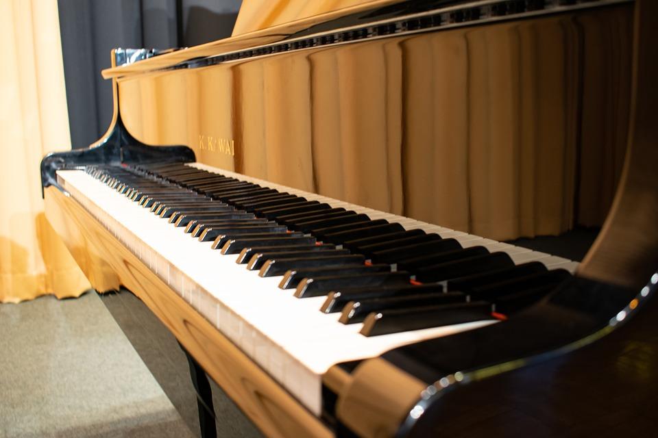 Piano, Wing, Keys, Reflection, Close Up, Black White