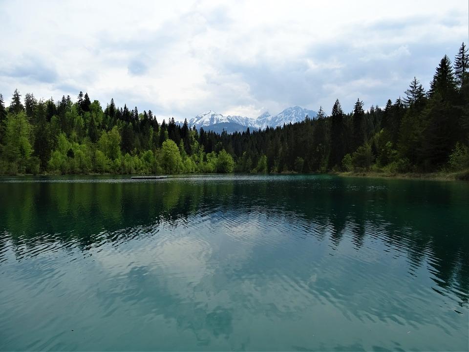 Lake, Waters, Reflection, Nature, Tree, River