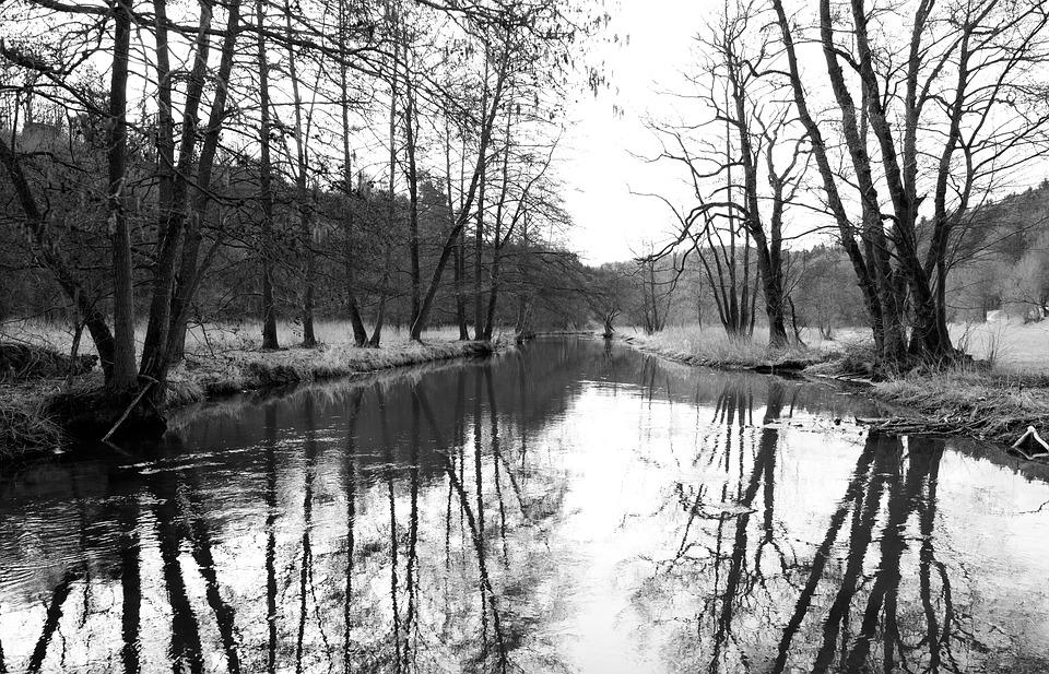 Reflection, Waters, Tree, River, Nature