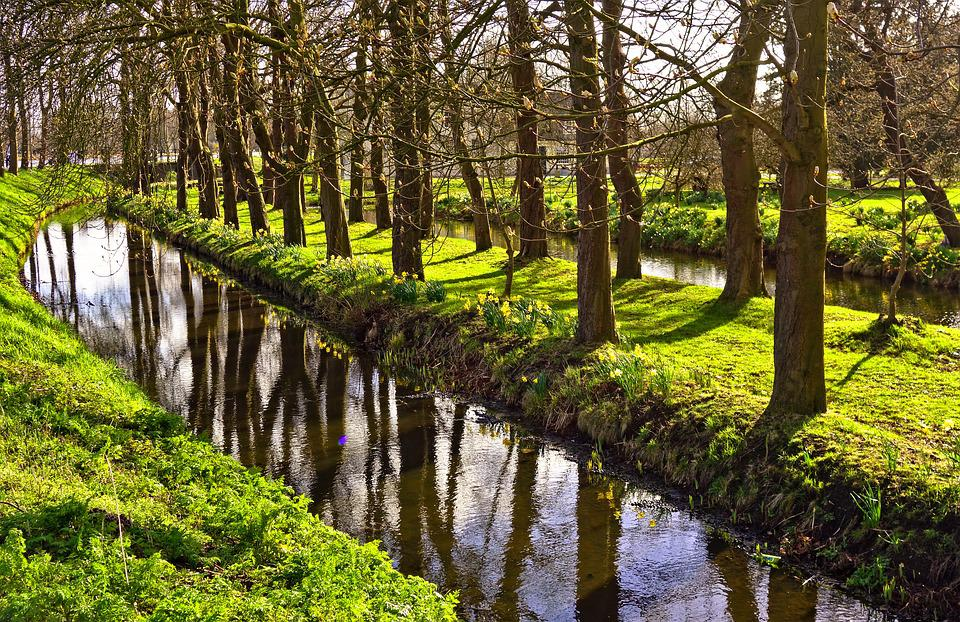 Ditch, Moat, Water, Trees, Reflection, Banks, Grass