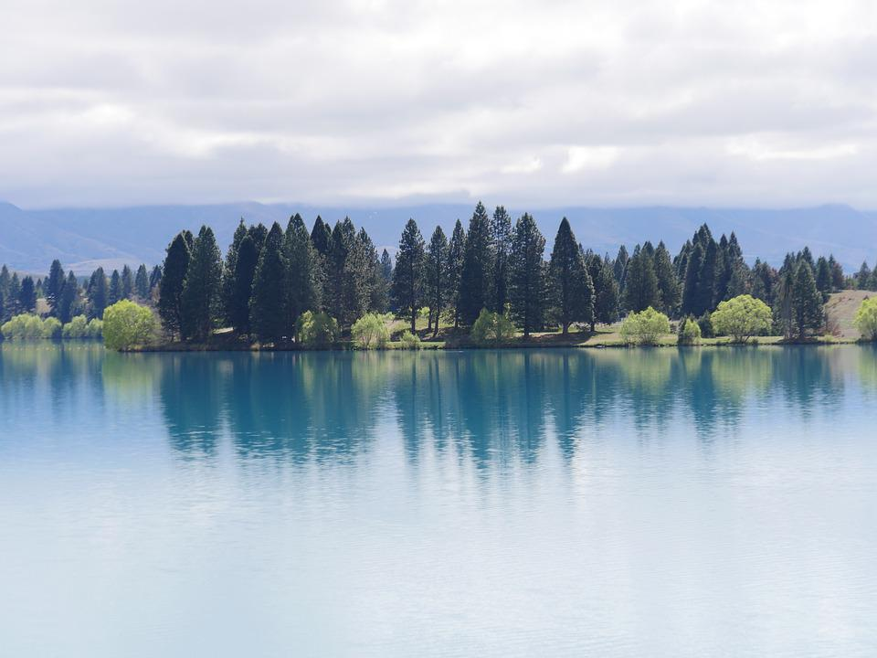 Lake, Forest, Reflection, Water, Nature, Landscape