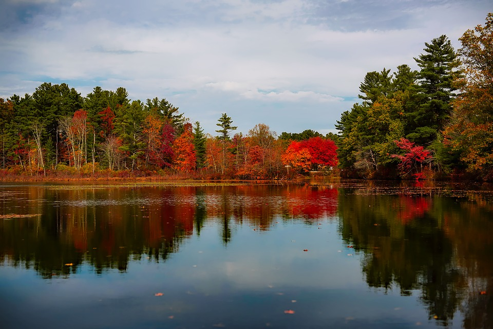 Massachusetts, Lake, Water, Reflections, Landscape
