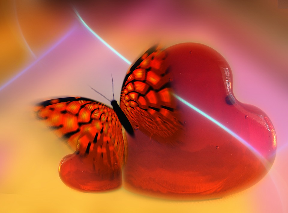 Heart, Love, Luck, Abstract, Butterfly, Relationship