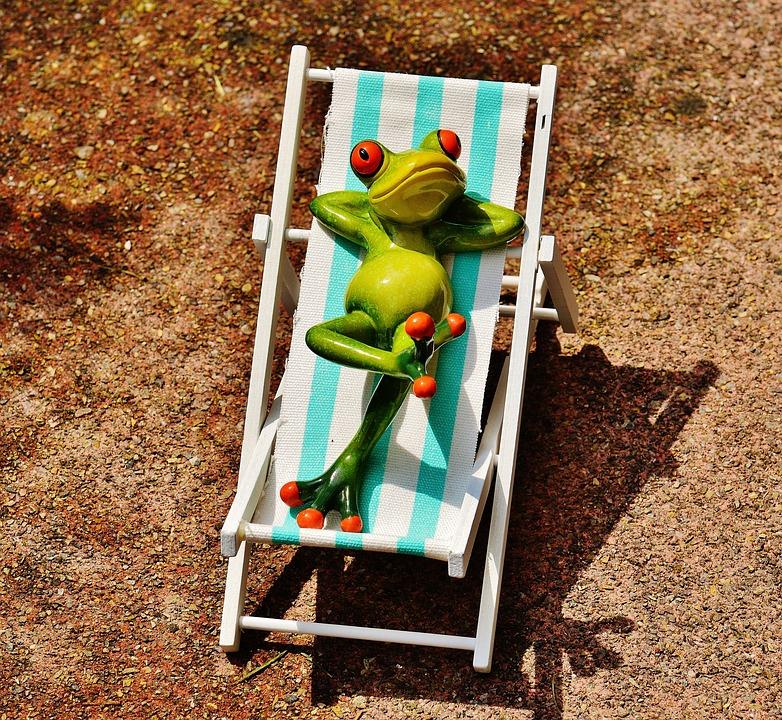 Deck Chair, Beach, Frog, Summer, Sun, Relaxation, Relax