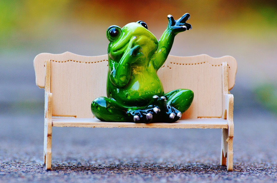 Frog, Bench, Relaxation, Rest, Funny, Cute, Fig, Couch