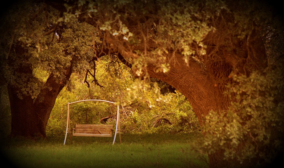 Swing, Peaceful, Relaxation, Rest, Relax