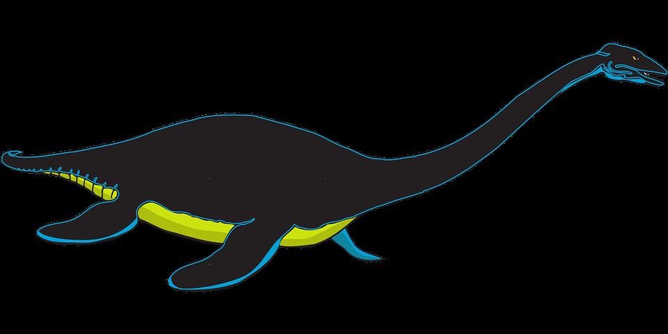 Creature, Reptile, Ancient, Aquatic, Fins, Nature