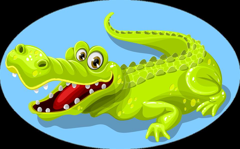 Crocodile, Green, Animal, Teeth, Reptile, Nature, Wild
