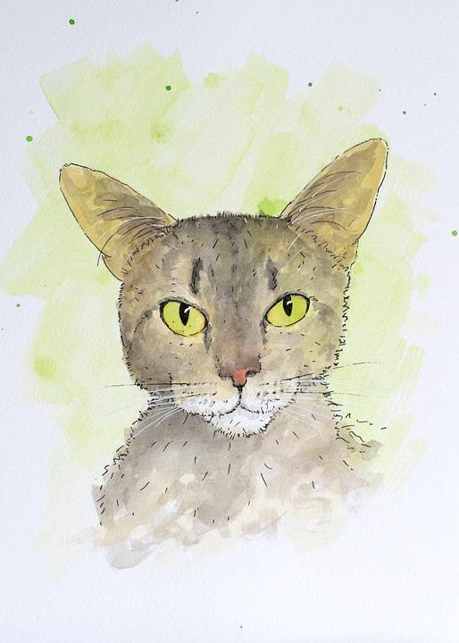Cat, Portrait, Art, Painting, Eyes, Green, Rescue