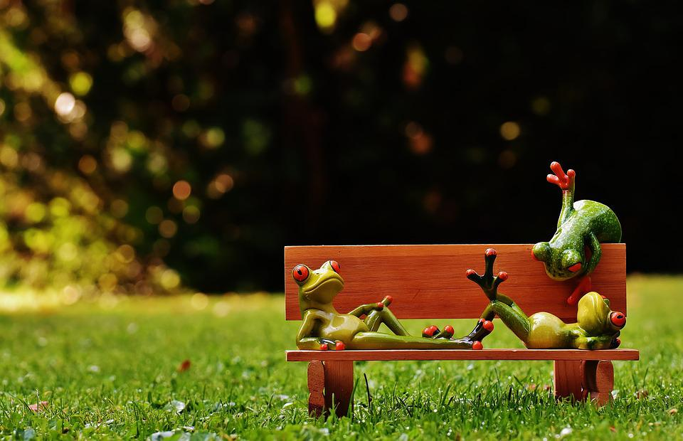 Frogs, Bank, Bench, Relaxed, Figure, Funny, Rest