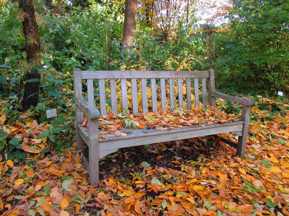 Bank, Park, Autumn, Leaves, Colorful, Park Bench, Rest