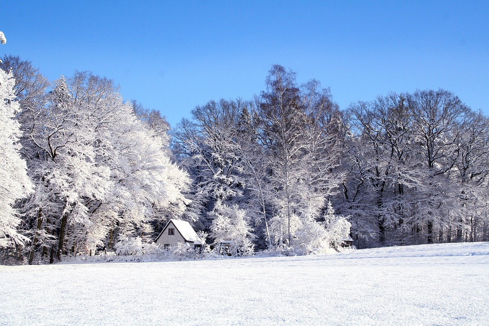 Winter, Landscape, Snow, Cold, Wintry, Snowy, Rest