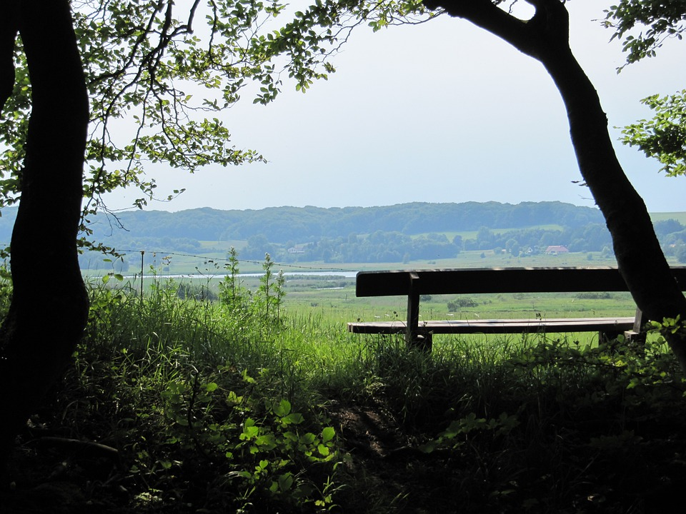 Bank, Log, Meadow, Rest, Relax, View, Denmark