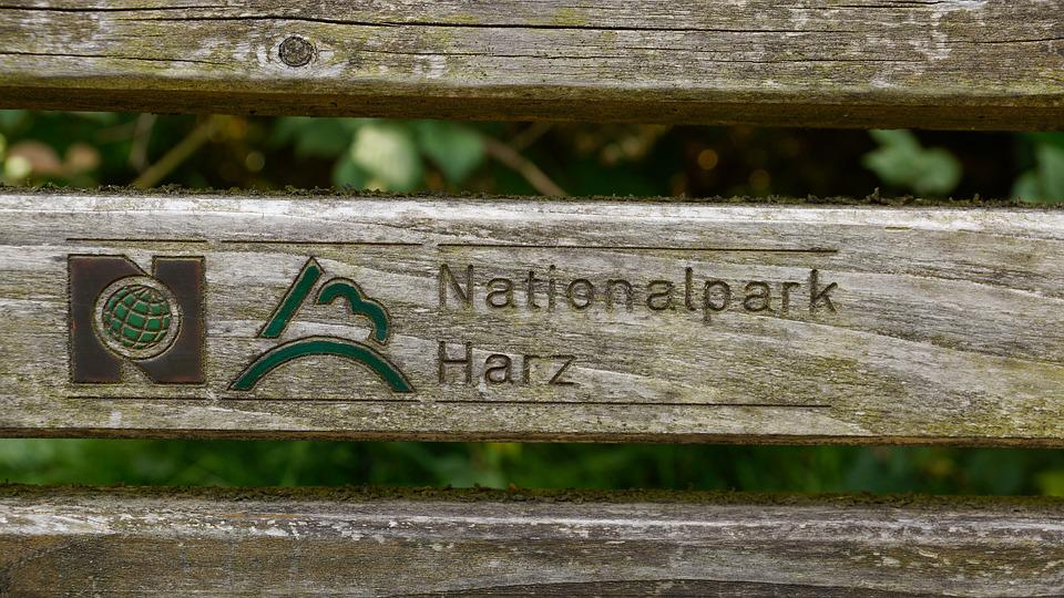 Bench, Harz, Harz Mountains, National Park, Rest, Wood