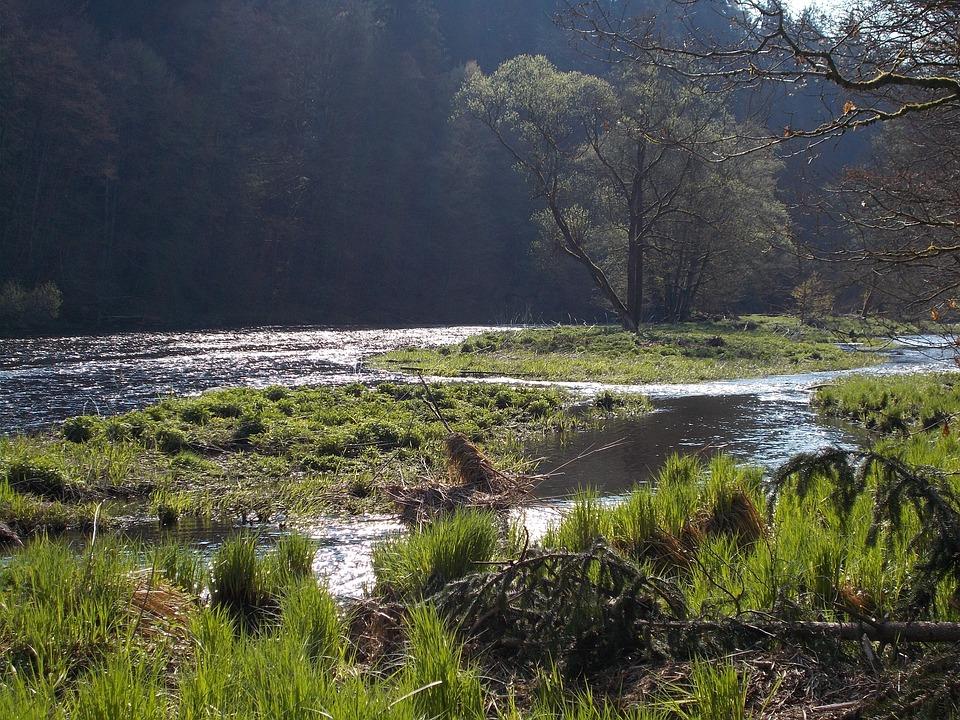 Nature Recording, River Landscape, Of Course, Rest