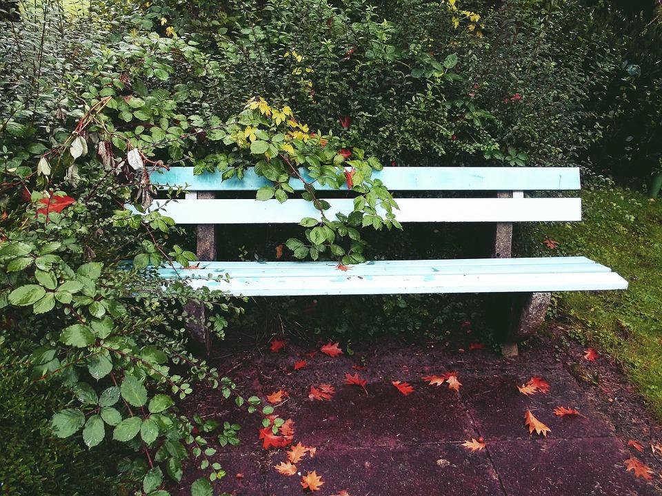 Bank, Garden, Park, Rest, Garden Bench, Nature, Sit