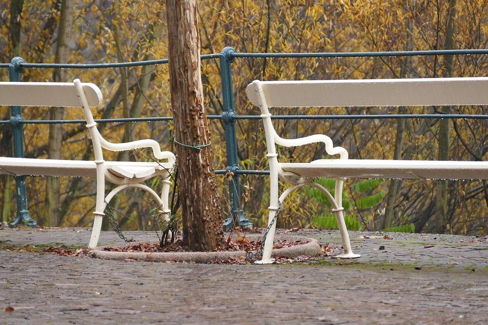 Autumn, Rest, Bank, Retirement, Blank, Rainy Day