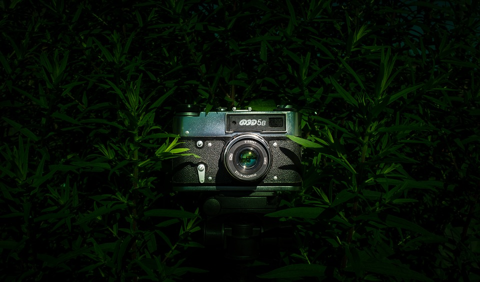 Camera, Photo, Nostalgia, Retro, Old, Images, Past