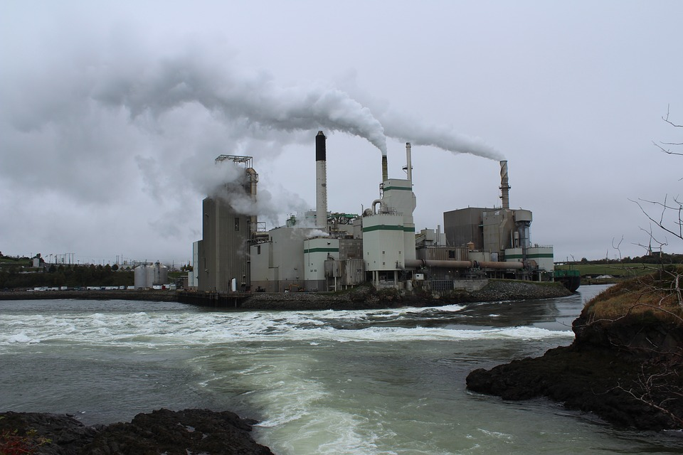Paper Mill, St John, Nova Scotia, Reversing Falls