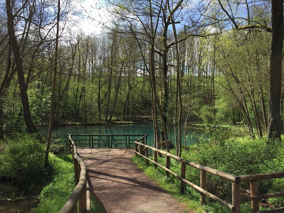 Source, Nature, Rhume, Green, Turquoise, Sun, Idyll