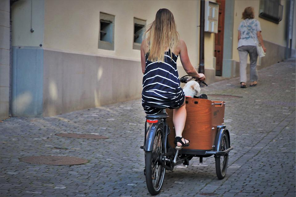 Rickshaw, Bike, Horse, Hair, Young, Girl, Happy, Dress