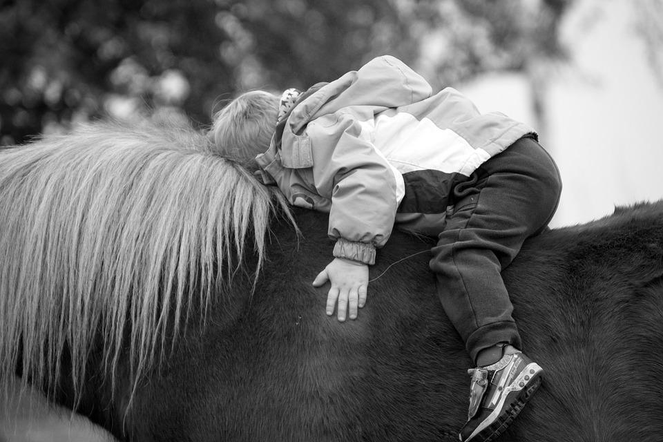 Pony, Horse, Animal, Mammal, Ride, Boy, Child, Snuggle
