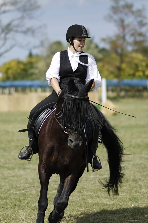 Ride, Equestrian, Dressage, Woman, Horse, Sport