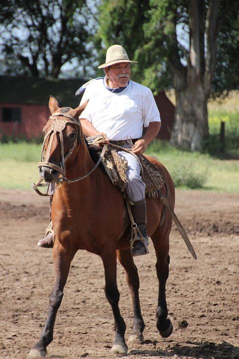 Horse, Rider, Argentina, Gaucho