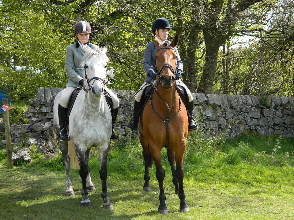 descriptive horseback riding Essay on horse riding largest database of quality sample essays and research papers on patterns essay descriptive horseback riding laura writes about her love of.