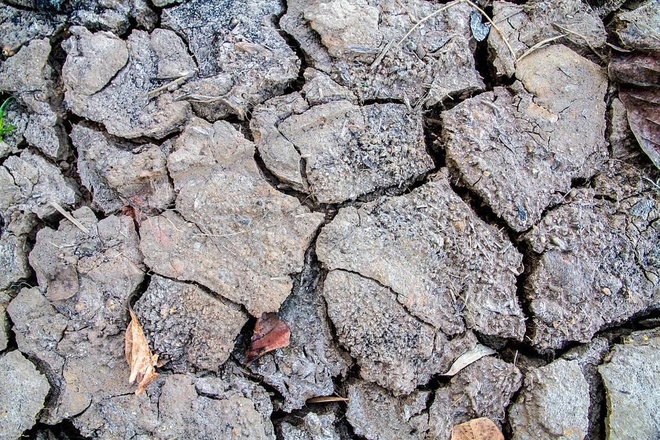 Soil, Rift, Cracked, Arid
