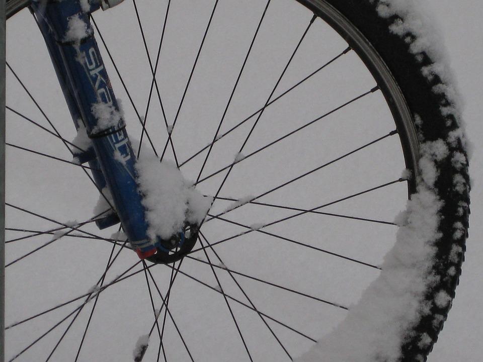 Mountain Bike, Bike, Wheel, Mature, Rim, Spokes