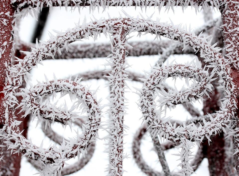 Fence, Frozen, Rime, Winter, White