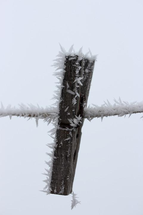Hook, Frozen, Rime, Winter, White