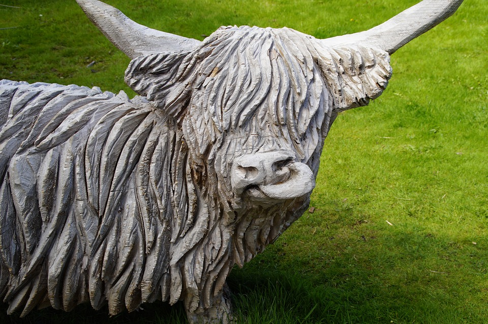 Cow, Ring, Scotland, Highlandrind, Sculpture, Wood