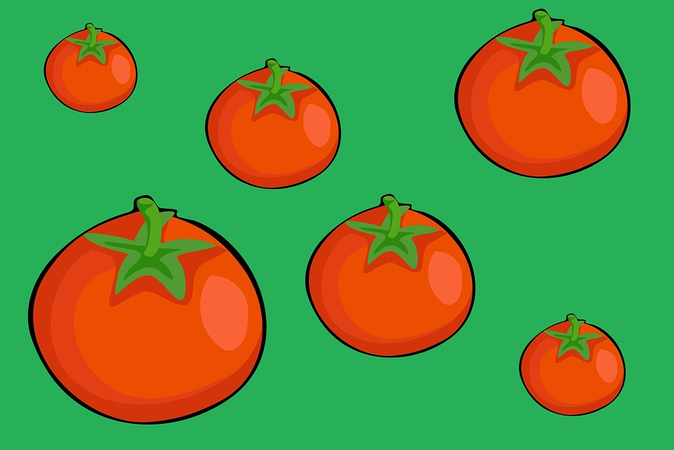 Fruit, Food, Tomato, Tomatoes, Red, Ripe, Diet, Fresh
