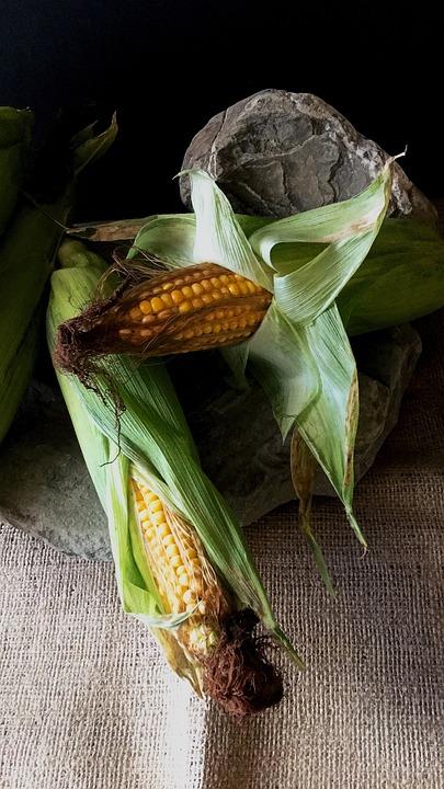 Corn, Food, Corn On The Cob, Ripe, Fruit