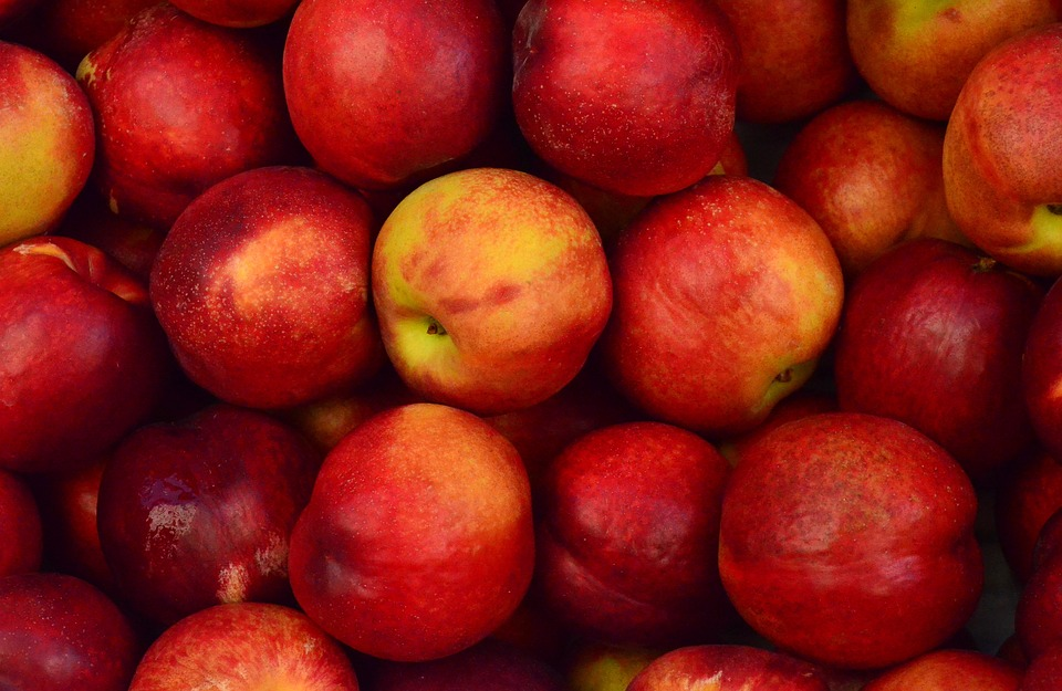 Apples, Close-up, Food, Fruits, Red, Ripe