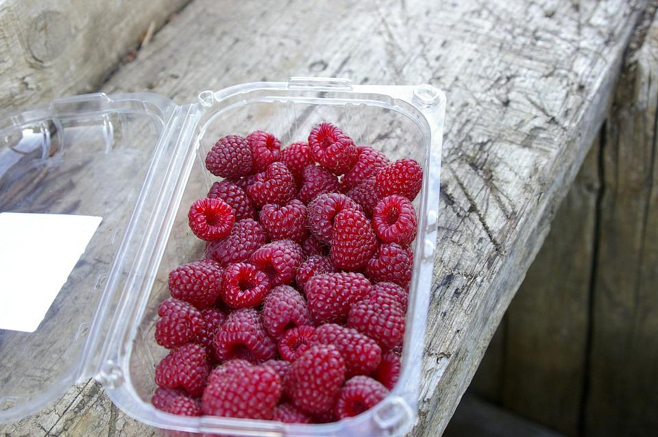 Raspberries, Summer, Nature, Wood, Ripe, Sweet, Berries