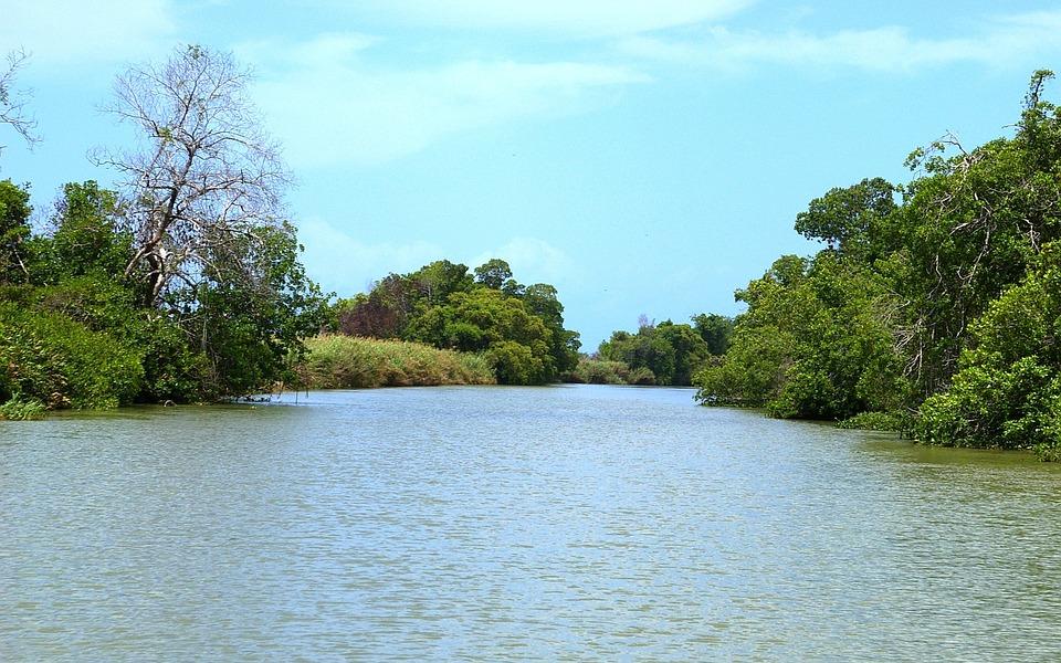 Black River, Black River Safari, Beautiful, River